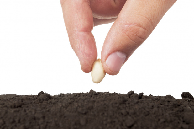 When It Comes To Sowing And Reaping What S A Seed Kenneth